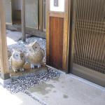 とある玄関 玄関先に二匹のふくろうを設置した様子です。