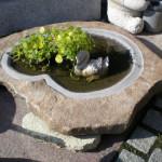 石製の水鉢もガーデニングにおすすめです。水草やメダカを入れて涼しげに。