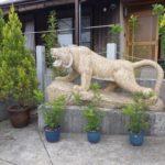 ①とは違う色目の黄色い御影石に彫刻した虎です。